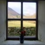 The-Window